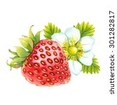 watercolor strawberry | Shutterstock . vector #301282817