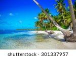 Tropical Paradise   Hammock...