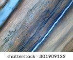 background  unique texture of... | Shutterstock . vector #301909133