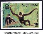 vietnam   circa 1981   a stamp... | Shutterstock . vector #302625353
