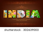 illustration of india... | Shutterstock .eps vector #302639003