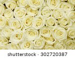 Stock photo isolated close up of a huge bouquet of white roses 302720387