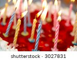 celebratory cake and burning... | Shutterstock . vector #3027831