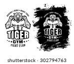 template sport logo for...   Shutterstock .eps vector #302794763