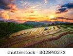terraced paddy field in mae jam ... | Shutterstock . vector #302840273