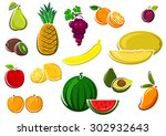 fresh juicy watermelon  apple ... | Shutterstock .eps vector #302932643