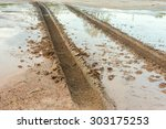 Wheel Tracks On Marshy Road...