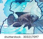 2000 ugandan shillings bank... | Shutterstock . vector #303217097