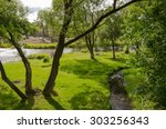 Sunny Landscape With A Creek...