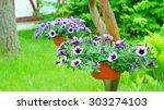 Hanging Flowerpots With Petunia