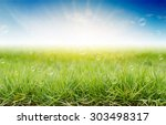 green grass under the morning... | Shutterstock . vector #303498317