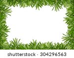 leaf frame on white background | Shutterstock . vector #304296563