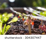photo shows irrigation system... | Shutterstock . vector #304307447