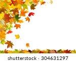 falling autumn maple leaves ...   Shutterstock . vector #304631297