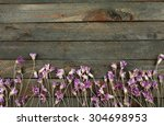 Beautiful Wild Flowers On...