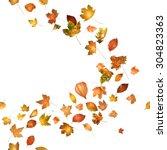Autumn Leaves Breeze Curve ...