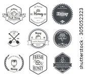 set of honey labels design... | Shutterstock .eps vector #305052323