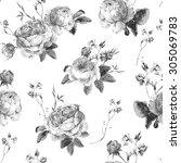 black and white vintage floral...   Shutterstock .eps vector #305069783
