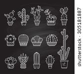 set vector geometric cacti  in... | Shutterstock .eps vector #305181887