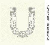 vector mono line style... | Shutterstock .eps vector #305236247