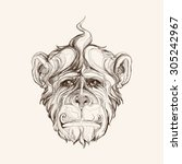 graphic portrait of a monkey. | Shutterstock .eps vector #305242967