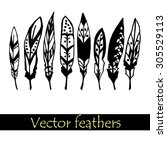 vector illustration with feather | Shutterstock .eps vector #305529113