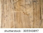 texture of wood | Shutterstock . vector #305543897