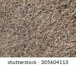 Hay Dry Grass Background