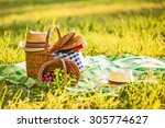 picnic with wine and grapes in... | Shutterstock . vector #305774627