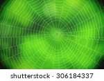 Spider Web Against A Green...