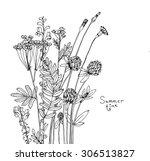 vector sketch of the...   Shutterstock .eps vector #306513827