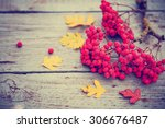 autumn background  autumn... | Shutterstock . vector #306676487