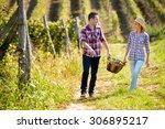 Happy Couple In Huge Vineyard...