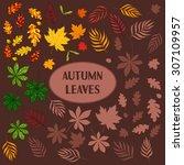 vector set of hand drawn autumn ... | Shutterstock .eps vector #307109957