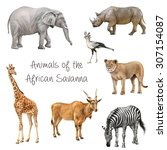 Animals Of The African Savanah...