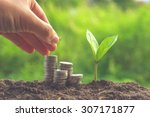 money and plant with hand with... | Shutterstock . vector #307171877