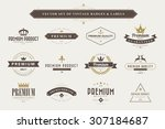 set of vintage  badges and... | Shutterstock .eps vector #307184687