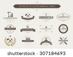 set of vintage  designer badges ... | Shutterstock .eps vector #307184693