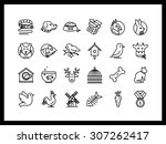 set of vector icons on the... | Shutterstock .eps vector #307262417