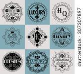 retro design luxury insignias...   Shutterstock .eps vector #307307897