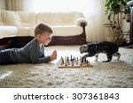 Stock photo little boy plays with cat chess lying on the floor 307361843