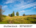 Summer Siberian Landscape With...