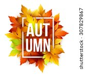 Autumn Typographic. Fall Leaf....