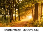 beautiful autumn scene invites... | Shutterstock . vector #308091533