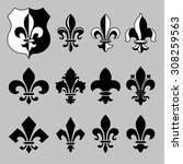 set of vector heraldic elements ... | Shutterstock .eps vector #308259563