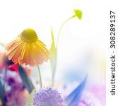 Flower Background. Beautiful...