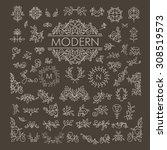 big vector set of line floral... | Shutterstock .eps vector #308519573