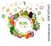 label organic vegetables on a... | Shutterstock .eps vector #308765543