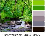 river over forest grove and... | Shutterstock . vector #308928497