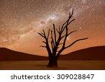 dead vlei at dusk in the... | Shutterstock . vector #309028847